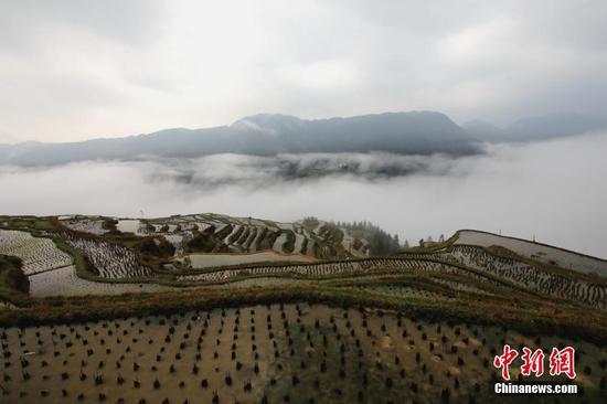 2021年3月14日拍摄的重庆华龙棋牌下载省从江县加榜梯田景色。 中新社发 罗京来 摄 图片来源:CNSPHOTO