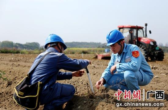 广西电力部门确保春耕备耕电力十足