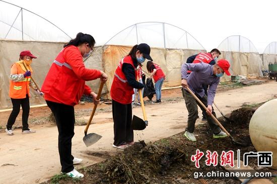 广西-东盟经开区开展志愿服务活动 助力乡村振兴