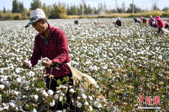 商务部:纯白无瑕的新疆棉花不容任何势力抹黑玷污