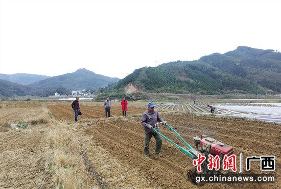 百色凌云:小农机大作为 春耕时节显身手