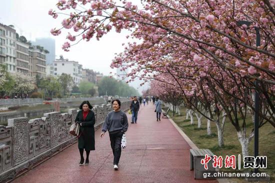图为市民在水城河休闲步道散步。 瞿宏伦 摄