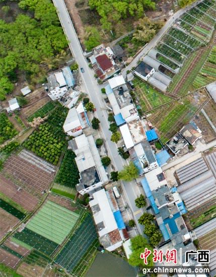 桂林灵川县大圩镇漓东沿线乱搭乱盖整治取得成效