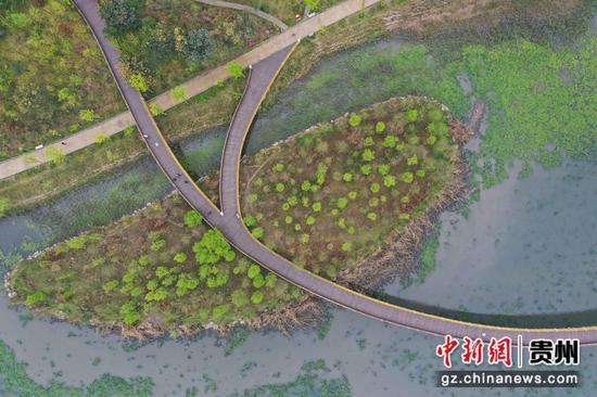 图为航拍明湖湿地公园。 瞿宏伦 摄
