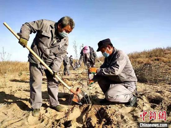 中泰纺织科技有限公司员工在湿地种植树苗。(资料图) 李桃 摄