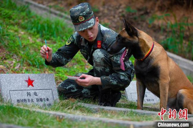 武警广西总队官兵清明时节祭扫功勋军犬