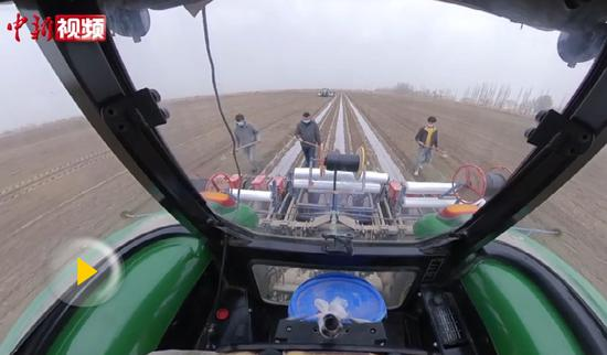 实拍新疆南部近200万亩棉花开播