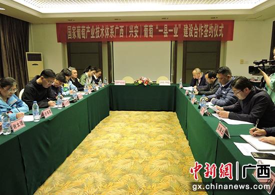 国家葡萄产业技术体系与桂林兴安县签约 推动产业转型升级