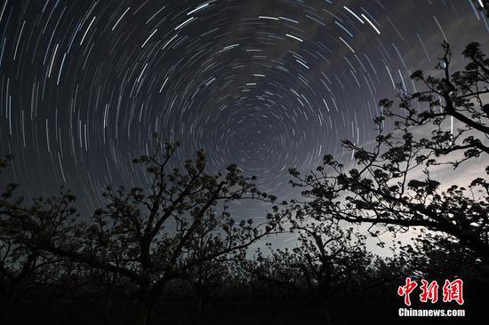 新疆库尔勒绚烂梨花遇上美丽星空