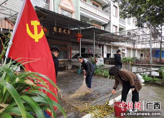 桂林灵川县大圩镇学史力行 党员干部助力乡村振兴