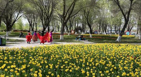 石城满园春色 游人畅游赏景