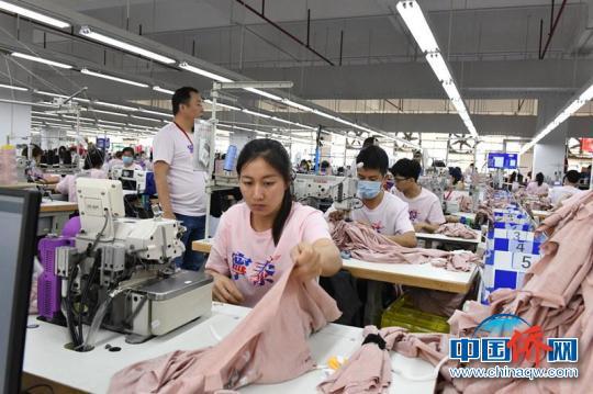 图为广西宁泰服装公司生产线 记者 林浩 摄