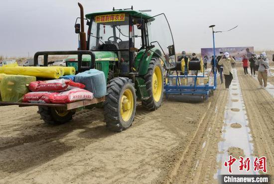 在尉犁县的一处棉田,装着农机自驾仪的拖拉机正在自主播种棉花。 陈剑飞 摄