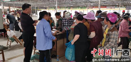 图为花农在横县茉莉花交易市场卖鲜花 吴彩冰摄