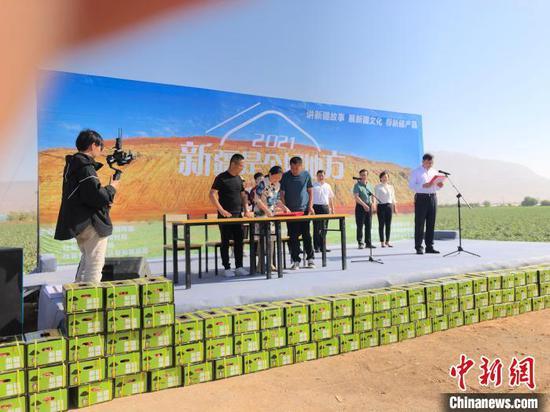 新疆吐鲁番举办援疆助农大型活动 网络直播走进田间地头 陶拴科 摄