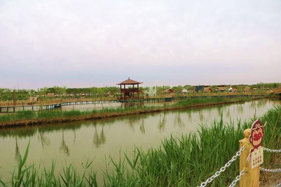 新疆博斯腾湖春季湖水芦苇惹人醉