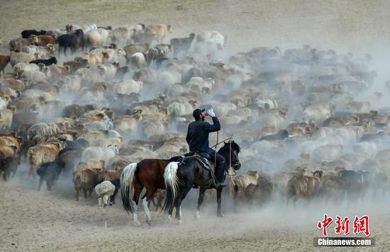 新疆阿勒泰百萬牲畜大轉場