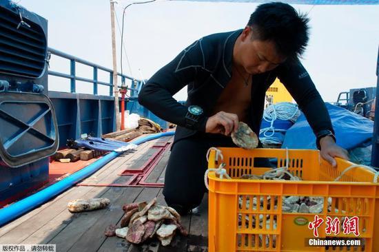 圖為潛水員上船后整理文物。