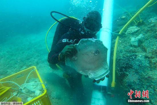 圖為潛水員展示文物。