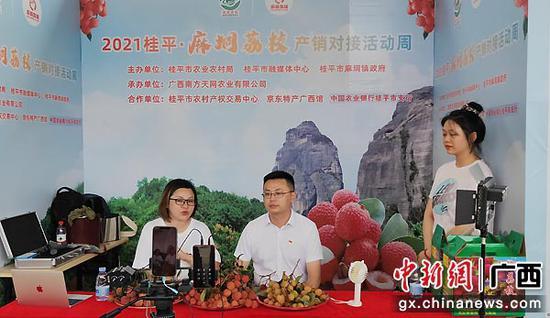 桂平市副市長徐旭現場直播帶貨,推介麻垌荔枝。羅先彬 攝