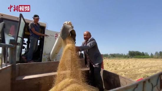 新疆喀什: 特色產業助村民增收