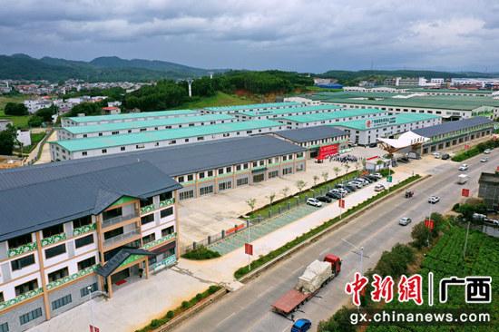 横县18个重大项目集中开竣工 再掀项目建设热潮