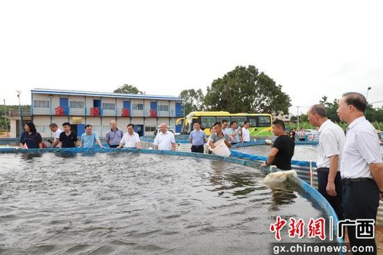 广西农机中心深入基层为群众办实事 大力推进机械化水产生态养殖