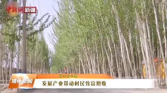 莎车县:发展产业带动村民致富增收