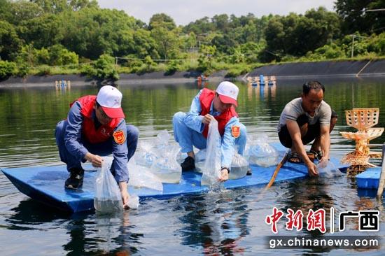 南方電網廣西欽州新區供電局黨員幫助犀牛腳蝦塘養殖戶放蝦苗、線路檢修。 譚連珠 攝