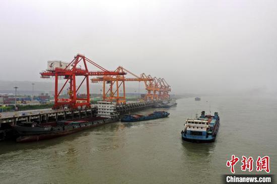 三峡枢纽白洋港码头货船往来如织 陈龙 摄