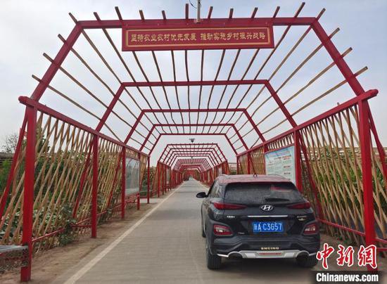 阿布都·艾尼鐵藝加工廠制造的大型葡萄架安裝就緒?!∈酚窠?攝