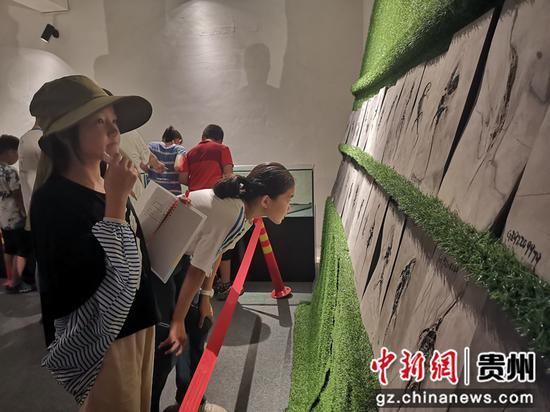 游客在观赏化石。