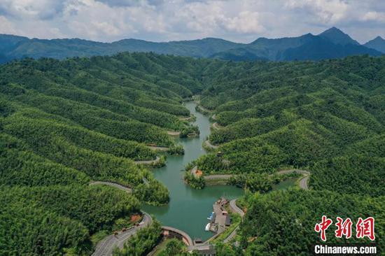 贵州赤水竹海夏日风光美