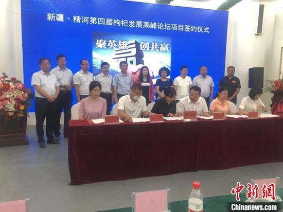 三家企业与精河县签约合作协议。 陶拴科 摄