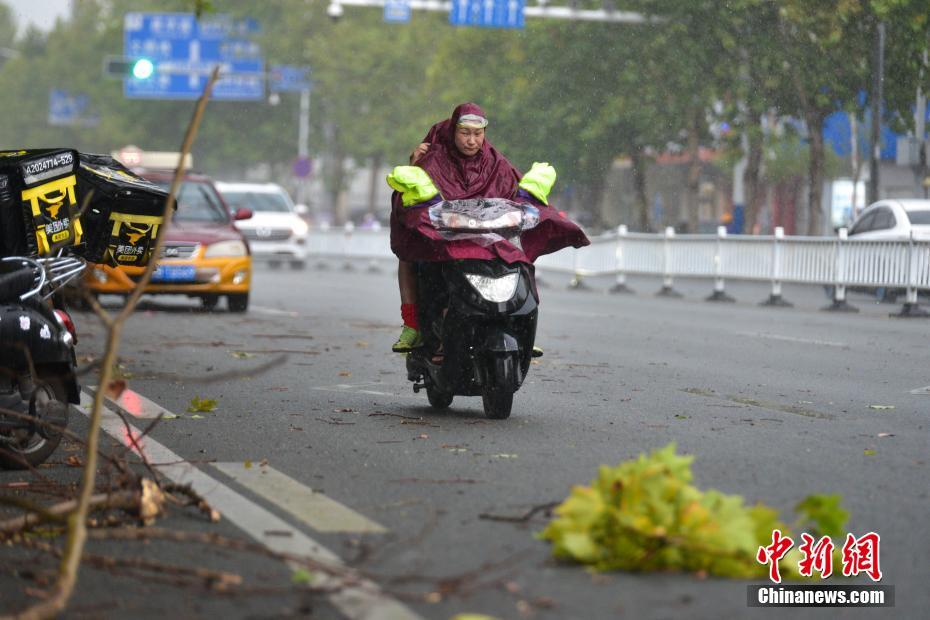 柳州遭遇大風大雨襲擊 樹枝被刮斷電動車被吹倒