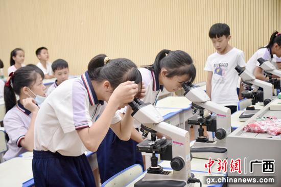 广西平乐县源头镇:新时代文明实践活动 赋能乡村教育