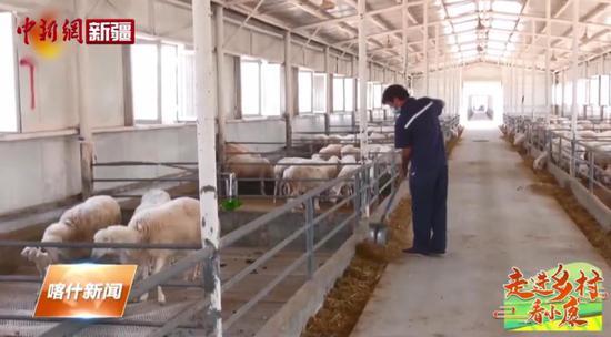 喀什乡村振兴系列报道之一:坚持打牢产业振兴基础