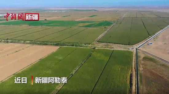 空中俯瞰新疆丰收景象