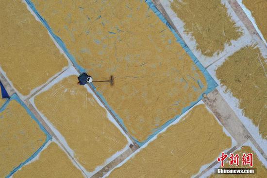 9月2日,航拍农户在加榜梯田收割部分成熟的水稻。瞿宏伦 摄