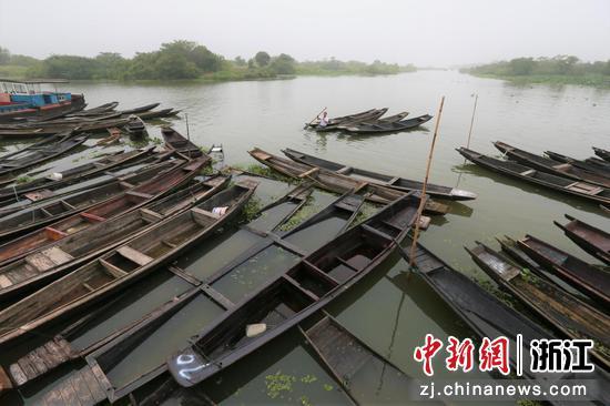 渔民上岸,政府对渔民船只进行整体征收  朱伟 摄