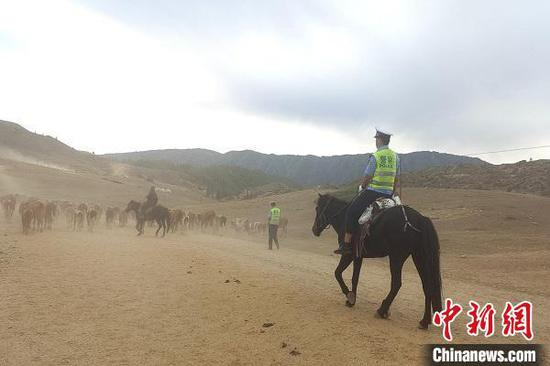 9月11日,哈巴河哈巴河县交警护航当地牧民安全转场。 杜霖枫 摄
