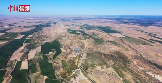 葡萄种植为中国第二大沙漠披上绿装
