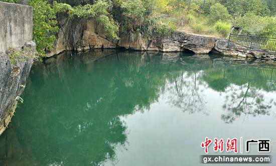 """广西桂林灌阳县""""美人鱼""""游进东南亚"""
