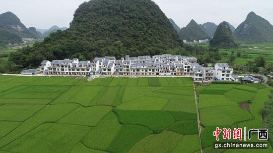 靖西三友村:边境线上的美丽蜕变