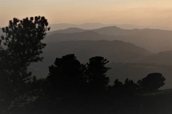 """远眺被誉为""""天堂牧场""""的那仁草原。(张旭茗 摄)"""