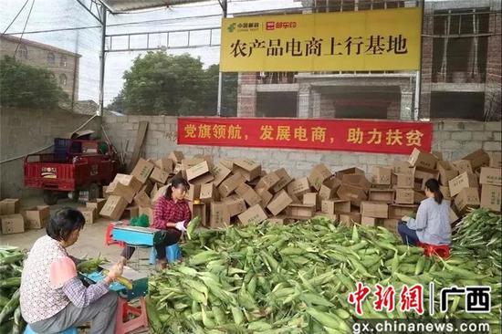 """横州市创新改革党建引领""""快递进村"""" 畅通乡村振兴脉络"""