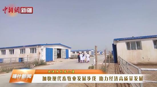 喀什地区加快现代畜牧业发展步伐