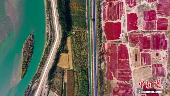 新疆博湖的辣椒红了 百姓的日子火了