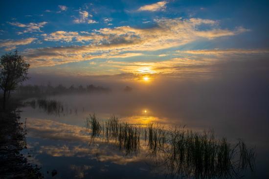 宛如一幅晨雾蒸腾的点彩油画展现在眼前。