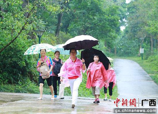图为冒雨参加登高节的市民。南宁青秀山风景区 供图